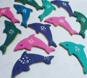 Dolphins childrens biscuits 500