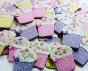 Kiddies biscuits - shaped & decorated like cupcakes &300