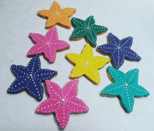 Starfish biscuits for kiddies 300