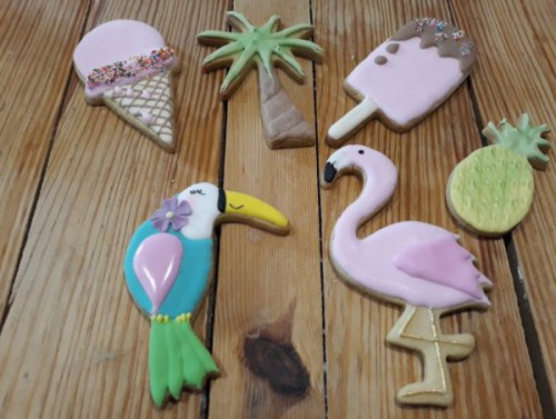 Homemade Tropical Themed Biscuits - Cookies 600